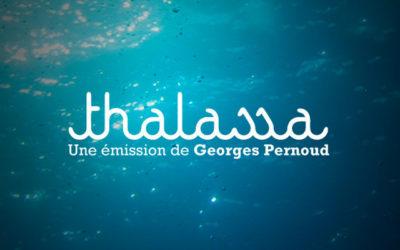 France 3 dément avoir licencié Bignolas par courriel