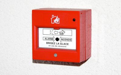 Été brûlant en Hollandie : entre feux et contre-feux