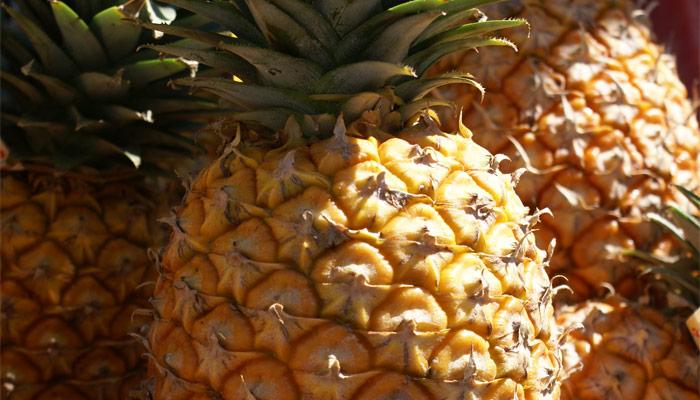 Pas d'ananas sur Radio Courtoisie