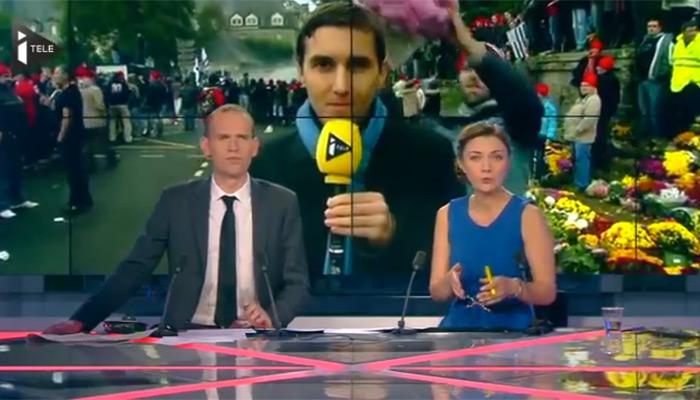 Quimper : un journaliste se prend un pot de chrysanthèmes sur la tête