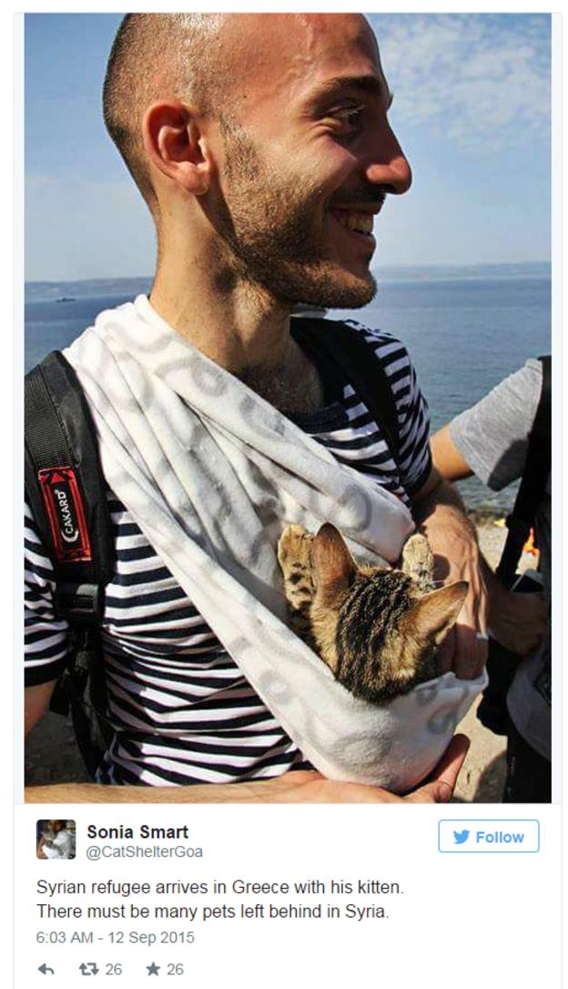 Ainsi ce beau jeune homme souriant portant dans une serviette nouée sur le ventre son petit chaton…