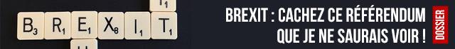 Brexit : cachez ce référendum que je ne saurais voir !