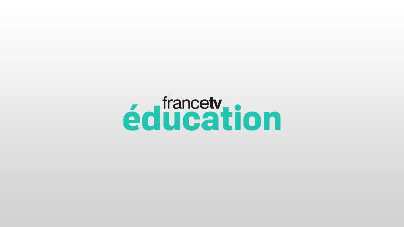 Francetv Éducation : vous reprendrez bien une goutte d'idéologie bobo ?