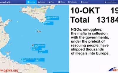 Rôle des ONG dans la crise des migrants : revue de presse