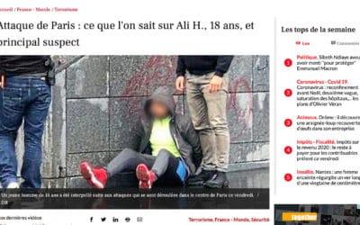Terrorisme et immigration : La Dépêche du Midi dit toute la vérité ou presque